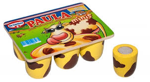 Dr oetker paula puddinkjes .leuk voor in je keukentje..