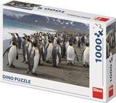 Puzzel van pinguins op strand. 1000 stukjes