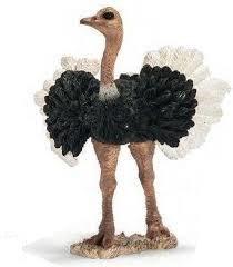 Schleich Struisvogel Man 146105