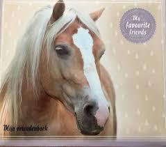 Paarden vriendenboek My favourite friends.