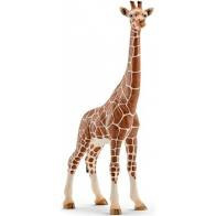 Schleich Giraffe Wijfje